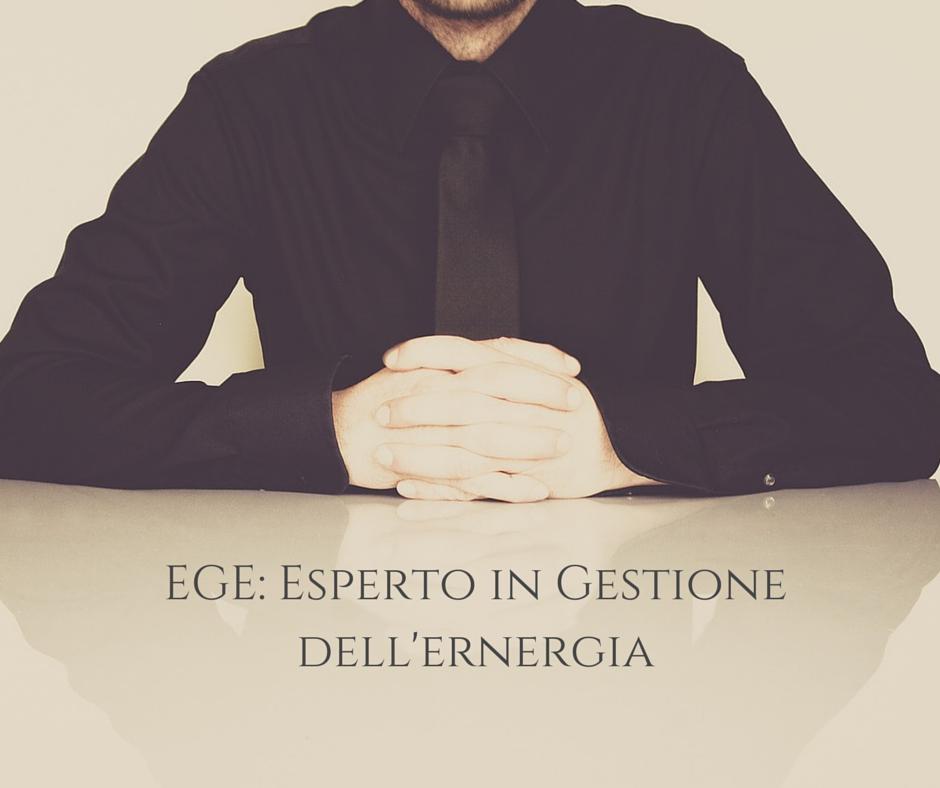 L'EGE, Esperto in Gestione dell'Energia