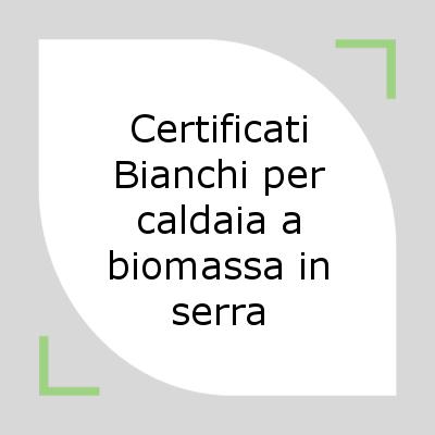 certificati bianchi per caldaia a biomassa