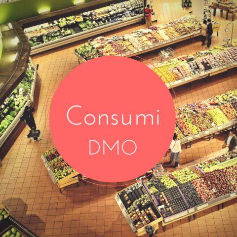 Consumi DMO Diagnosi energetica aziendale