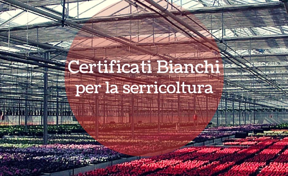certificati bianchi per serricoltura